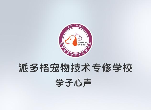 【学子感言】派多格第三期首席宠物美容师