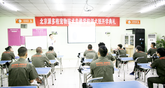 派多格宠物(技术培训)第42期训犬班开学典礼