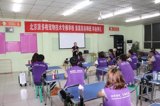 派多格宠物(技术培训)第12期首席美容师班毕业典礼