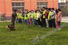 北京宠物美容学校第47期美容班训犬课程
